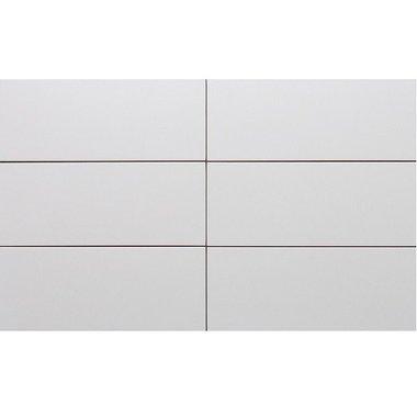 Wandtegel mat wit 20x50 cm
